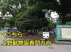 DSC05797.JPG